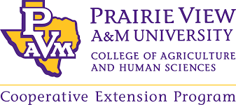 Copy of Prairie View A&M